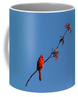 Coffee Mug featuring the photograph Cardinal On A Cherry Branch Dsb033 by Gerry Gantt