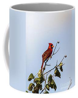 Coffee Mug featuring the photograph Cardinal On Treetop by Robert Frederick