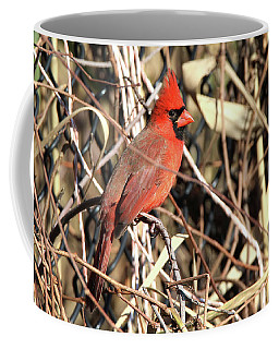 Cardinal Setauket New York Coffee Mug