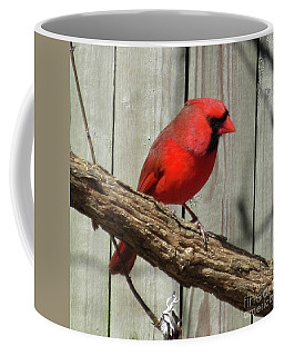 Cardinal Waiting For Spring Coffee Mug