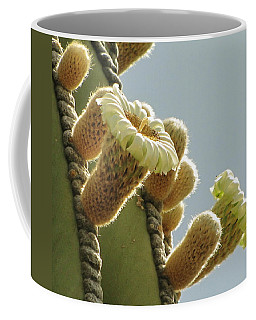 Coffee Mug featuring the photograph Cardon Cactus Flowers by Marilyn Smith