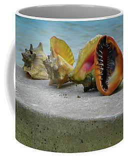 Coffee Mug featuring the photograph Caribbean Charisma by Karen Wiles