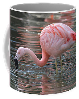 Caribbean Coral Colors Coffee Mug by Living Color Photography Lorraine Lynch