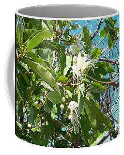 Caribbean Honeysuckle Coffee Mug