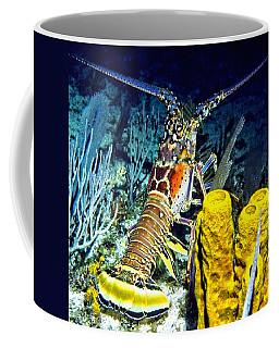 Caribbean Reef Lobster Coffee Mug
