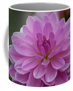 Carmen Bunky 3 Coffee Mug
