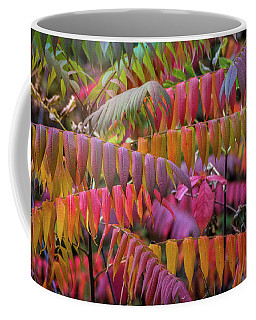 Coffee Mug featuring the photograph Carnival Of Autumn Color by Bill Pevlor