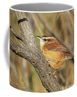 Carolina Wren Coffee Mug