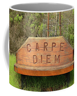 Coffee Mug featuring the photograph Carpe Diem Bench by Art Block Collections