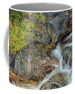 Cascade 4 Coffee Mug