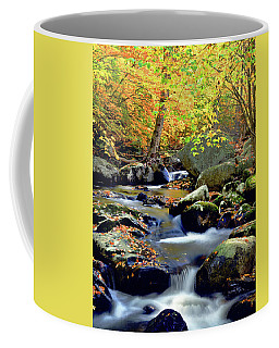 Cascade Brook Coffee Mug