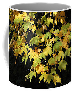 Coffee Mug featuring the photograph Cascading Leaves by Doris Potter