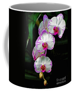 Coffee Mug featuring the photograph Cascading Orchid Beauties by Sue Melvin