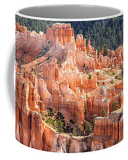 Castle Path Coffee Mug
