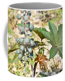Coffee Mug featuring the photograph Castor Oil Plant by Ray Shrewsberry
