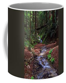 Castro Canyon In Big Sur Coffee Mug