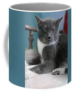 Cat Boticas Portrait  Coffee Mug