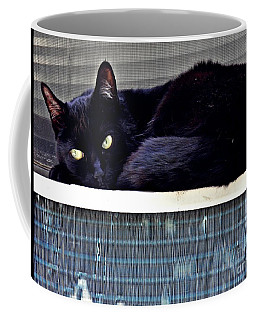 Cat Conditioner Coffee Mug