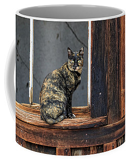 Cat In A Window Coffee Mug by Scott Warner