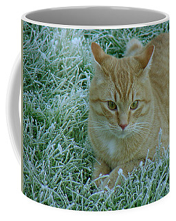 Cat In Frosty Grass Coffee Mug by Shirley Heyn