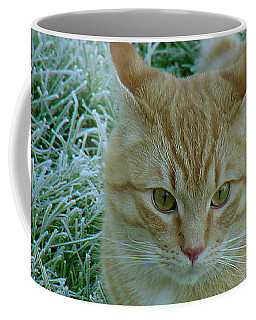 Cat In Frosty Grass Coffee Mug
