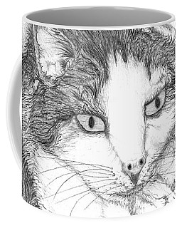 Domestic Cat Coffee Mug