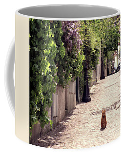 Cat On Cobblestone Coffee Mug