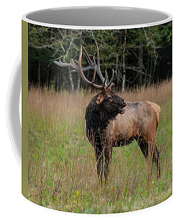 Coffee Mug featuring the digital art Cataloochee Valley Elk  by Chris Flees