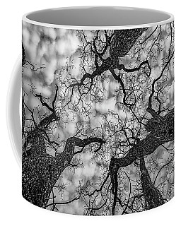Catalpa And Altostrato Q Coffee Mug