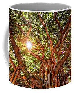 Catch A Sunbeam Under The Banyan Tree Coffee Mug