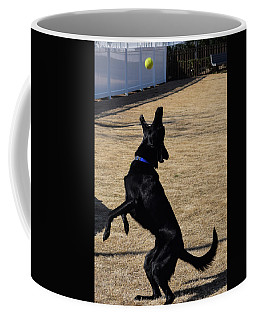 Catch Coffee Mug