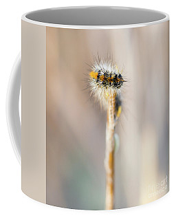 Caterpillar On The Stick Coffee Mug
