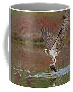 Catfish For Dinner Coffee Mug