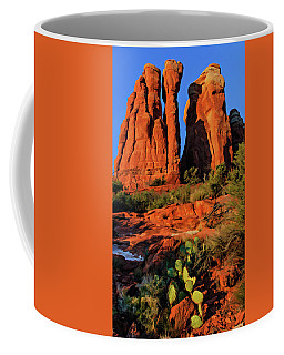 Cathedral 06-074 Coffee Mug