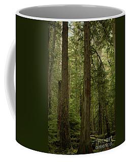 Cathedral Grove Coffee Mug