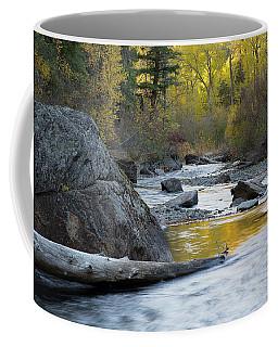 Catherine Creek Coffee Mug