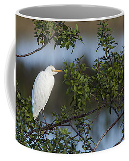 Cattle Egret In The Morning Light Coffee Mug