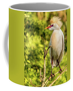 Cattle Egret Lookout Coffee Mug by Jane Luxton