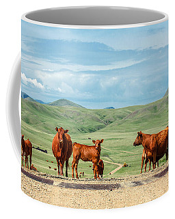 Cattle Guards Coffee Mug