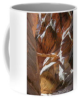 Coffee Mug featuring the photograph Caught In A Slot by Gaelyn Olmsted