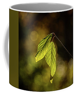 Caught In The Light Coffee Mug