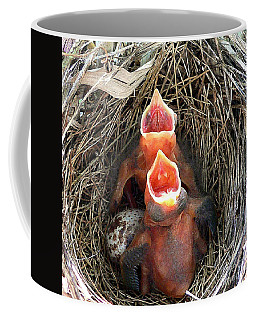 Cavernous Cardinals Coffee Mug by Al Powell Photography USA