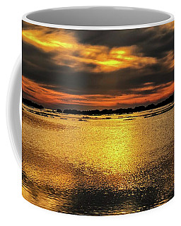 Coffee Mug featuring the photograph Ceader Key Florida  by Louis Ferreira