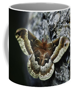Cecropia Moth Coffee Mug