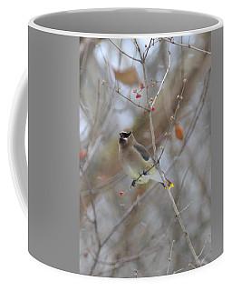 Cedar Wax Wing 2 Coffee Mug