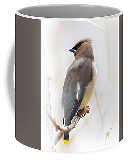 Cedar Wax Wing Coffee Mug