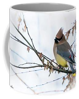 Cedar Waxwing 03 Coffee Mug