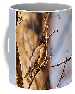 Cedar Waxwing In Autumn Coffee Mug