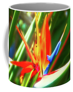 Coffee Mug featuring the photograph Celestial Skies Bird Of Paradise by Aimee L Maher Photography and Art Visit ALMGallerydotcom