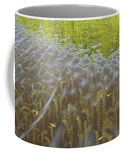 Cenaiko Lake Coffee Mug